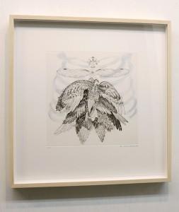 Archaeopteryx-FR