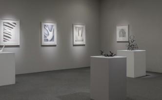 noe aoki exhibition view-ec