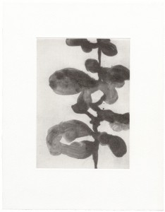 christianeloehr aquatint01
