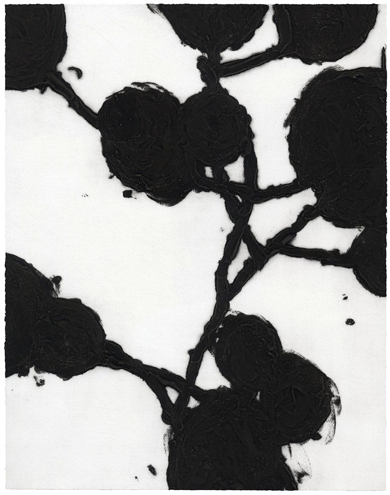christianeloehr carborundum 03